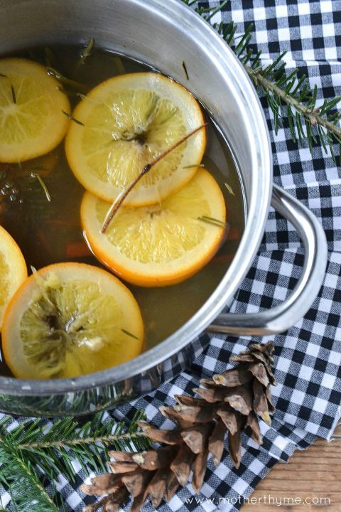 Weihnachtsduft selber machen mit Gewürznelken und Zitronen