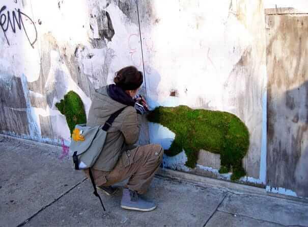 Moos Graffiti - Bär an die Wand malen