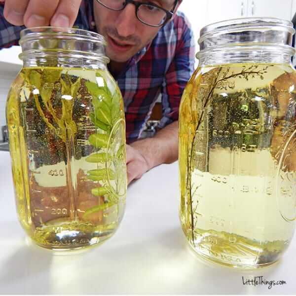 DIY Fotoeffekte-Getrocknete Blumen und Blätter in Öl tauchen-DIY Bastelidee