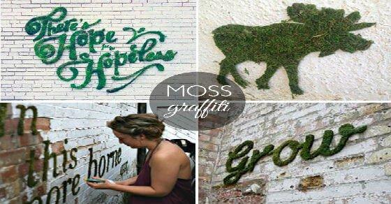 Moos Graffiti: das coolste DIY Projekt aller Zeiten