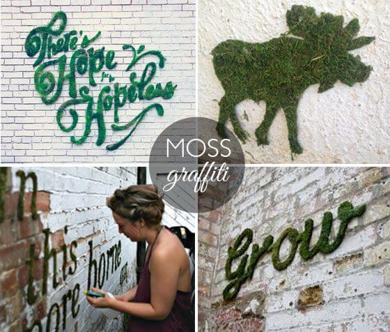 DIY Wanddeko zum Selbermachen mit Moos