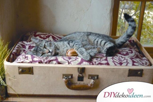 Bett für Haustiere basteln - Wohnideen mit alten Koffern