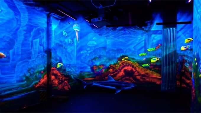 Paintgalaxy Sea Life in Berlin