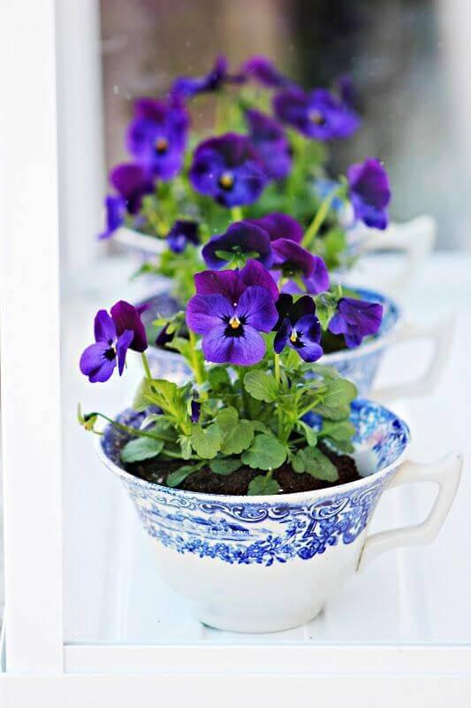Mini Blumengarten in Tassen gestalten - Deko Ideen für den Frühling