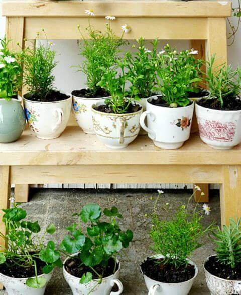 Kräutergarten in Teetassen gestalten - Deko Idee