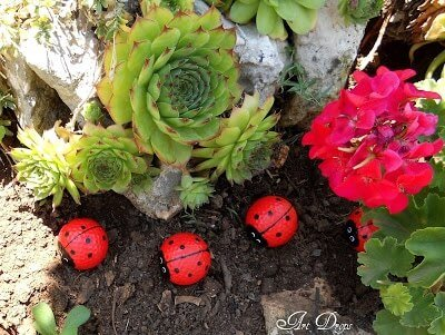 Marienkäfer aus Golfbällen-tolle Gartendeko selber machen