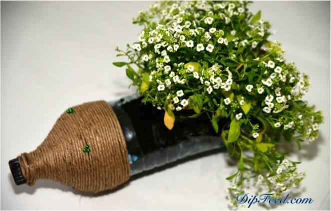 Igel förmige Plastikflasche zum Blumentopf zaubern