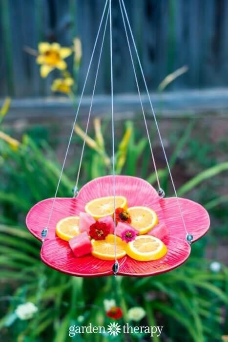 DIY Gartendeko-Ideen, Schmetterlinge füttern