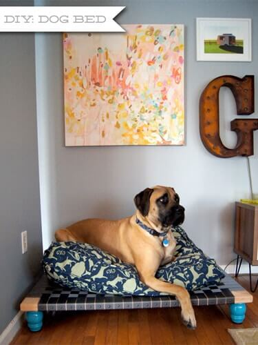 diese hundebetten sind so s dein h ndchen w rde eins. Black Bedroom Furniture Sets. Home Design Ideas