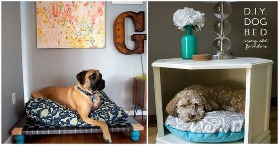 Diese Hundebetten sind so süß! Dein Hündchen würde eins sicher lieben!
