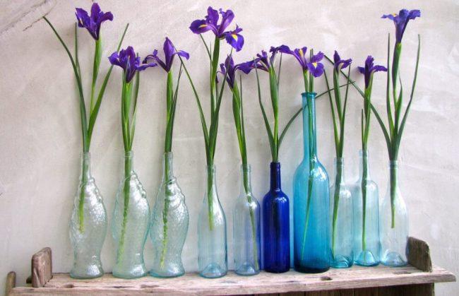 DIY Wohnideen mit Blumen - Frühlingsdeko zum Selbermachen