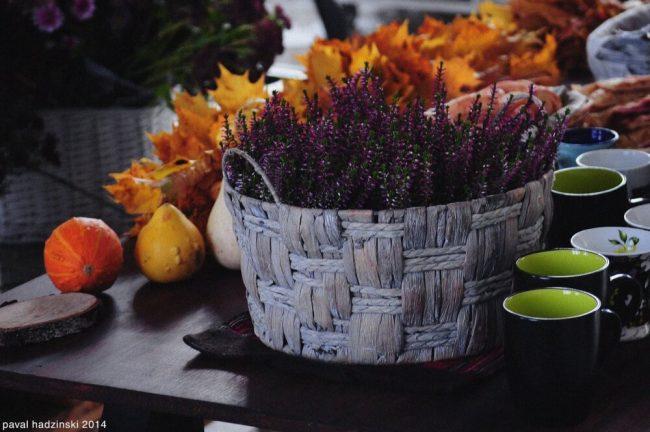 Körbchen mit Blumen Tischdeko Ideen - Herbstdeko mit Blättern und Kürbissen