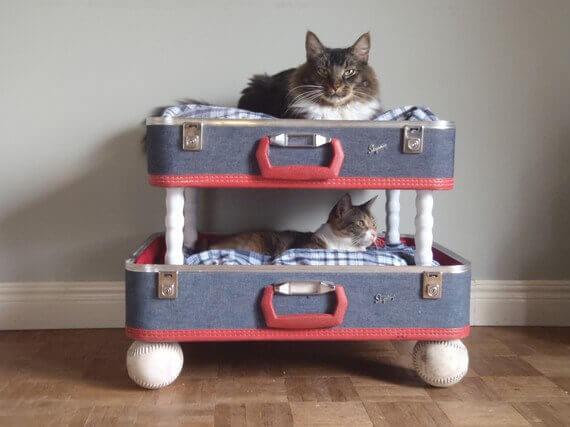 Katzenbett selber bauen - lustige Ideen mit alten Koffern