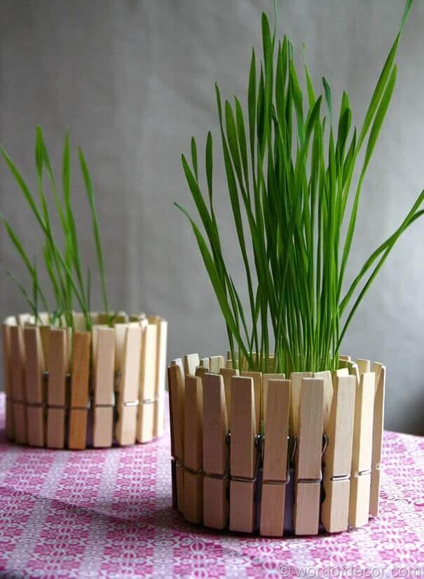 Wäscheklammern-Behälter für Kerzen und Pflanzen