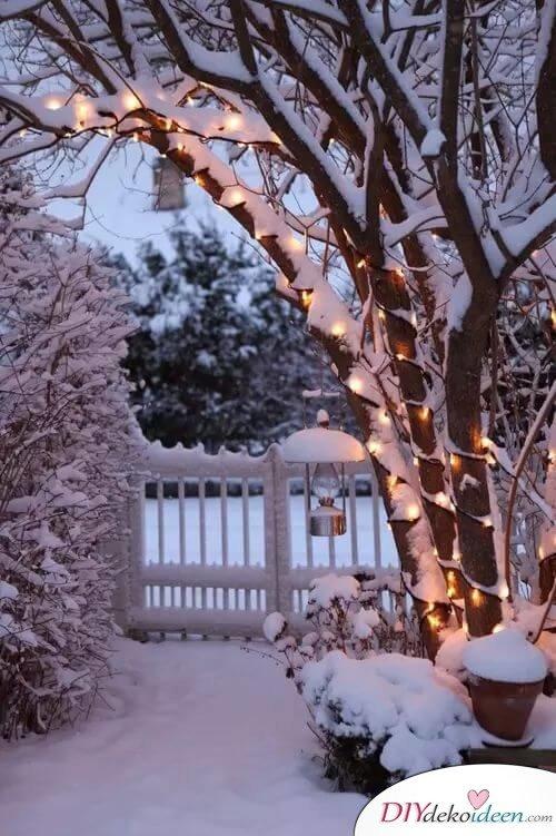Bäume mit Lichterketten schmücken - Gartendeko zu Weihnachten