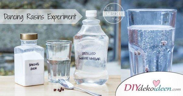 tanzende Rosinen Experiment - Wasser mit Essig und Natron