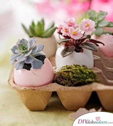DIY Frühjahrsdeko-Ideen - Winzige Blümchen in Eierschalen