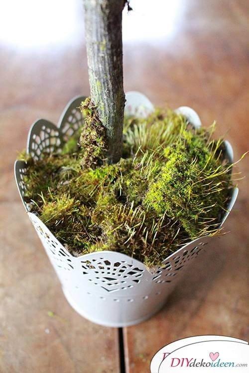 DIY Dekoidee Knopfbäumchen basteln zu Ostern - Töpfchen mit Moos dekorieren