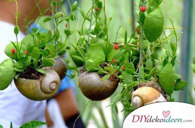 Schneckenhaus-Blumenampel – Gartendeko selber machen