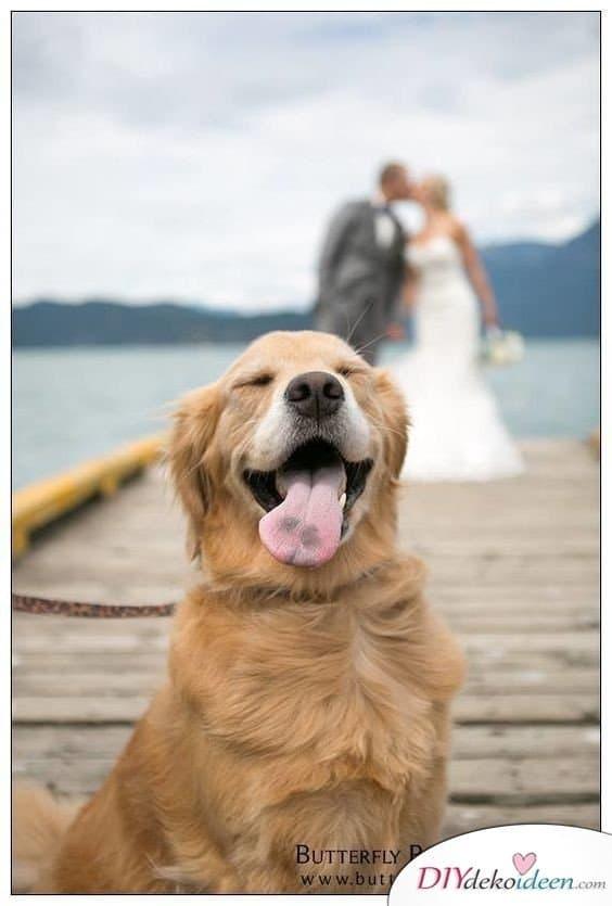 Witzige Hochzeitsfotos - Heiraten