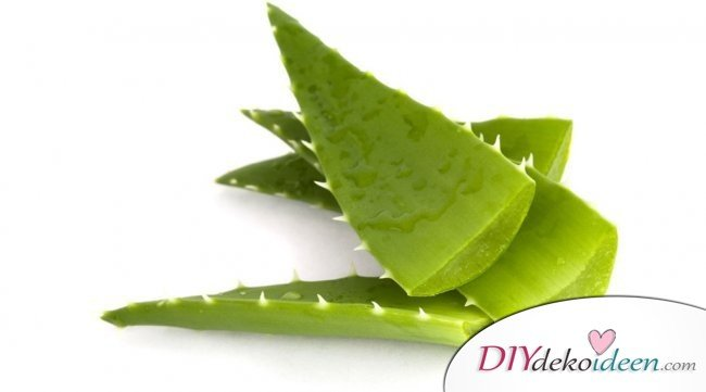 9 Hausmittel gegen Sonnenbrand - Aloe Vera