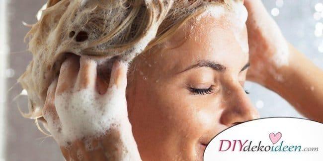 kosmetik selber machen 12 rezepte f r shampoos sp lungen und kosmetika. Black Bedroom Furniture Sets. Home Design Ideas