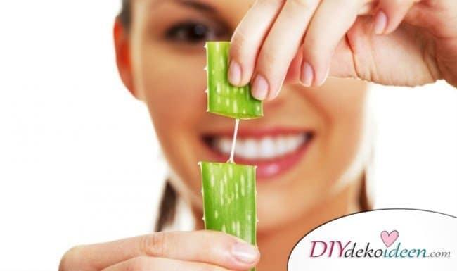 Rezepte Shampoo selber machen - Aloe-Vera-Shampoo für fettiges Haar