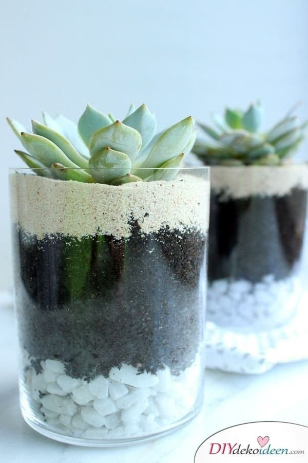 15+ DIY Bürodeko Ideen - DIY Sukkulenten Terrarium im Glas