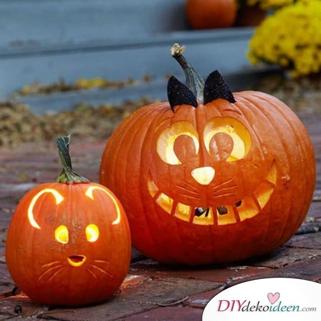 Anleitungen zum Kürbis schnitzen - Halloween Kürbislaterne schnitzen