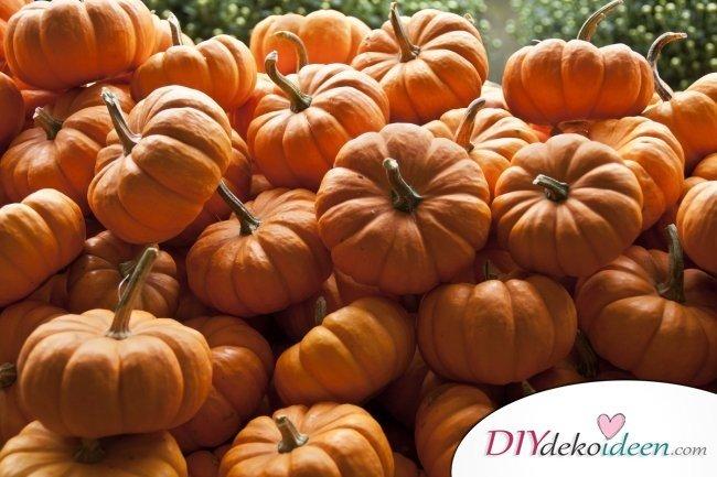 Anleitungen zum Kürbis schnitzen - Halloween Kürbislaternen schnitzen