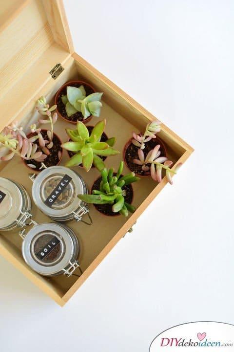 Bastelideen für DIY Weihnachtsgeschenke - Weihnachten Geschenke basteln - DIY Sukkulenten in Box