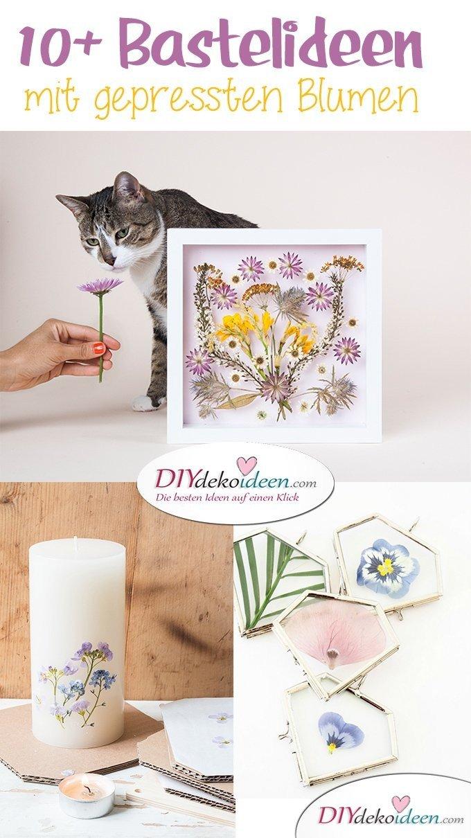 Bastelideen mit gepressten Blumen, DIY Bastelideen, DIY Dekoideen, Blumen pressen, Dekoidee, Blumendeko, Wanddeko basteln,