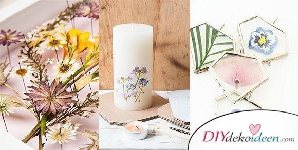 Süße DIY Bastelideen mit gepressten Blumen zum nachmachen
