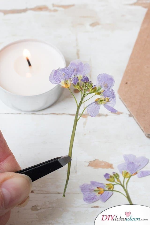 Kerzen basteln, Bastelideen mit gepressten Blumen, DIY Bastelideen, DIY Dekoideen, Blumen pressen, Dekoidee, Blumendeko, Wanddeko basteln,