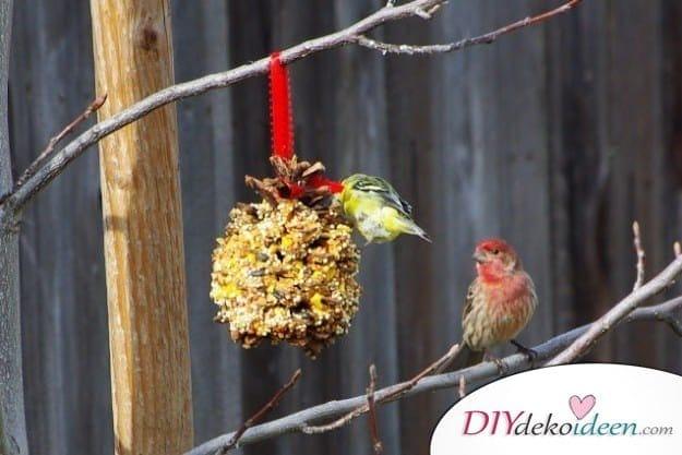 Basteln mit Tannenzapfen Weihnachten - 11 zauberhafte Bastelideen - Meisenknödel