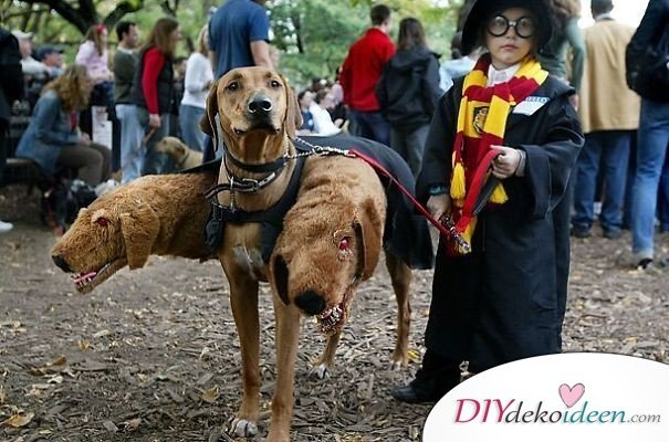 11 Halloween Kostüm Ideen für Kinder - DIY Harry Potter Kostüm