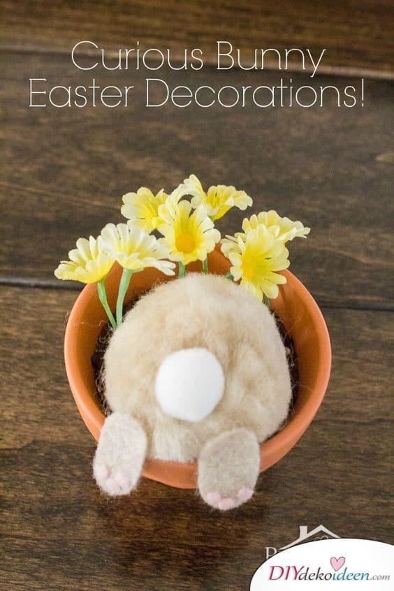 Neugieriges Häschen im Blumentopf - lustige Ostergeschenke für Erwachsene