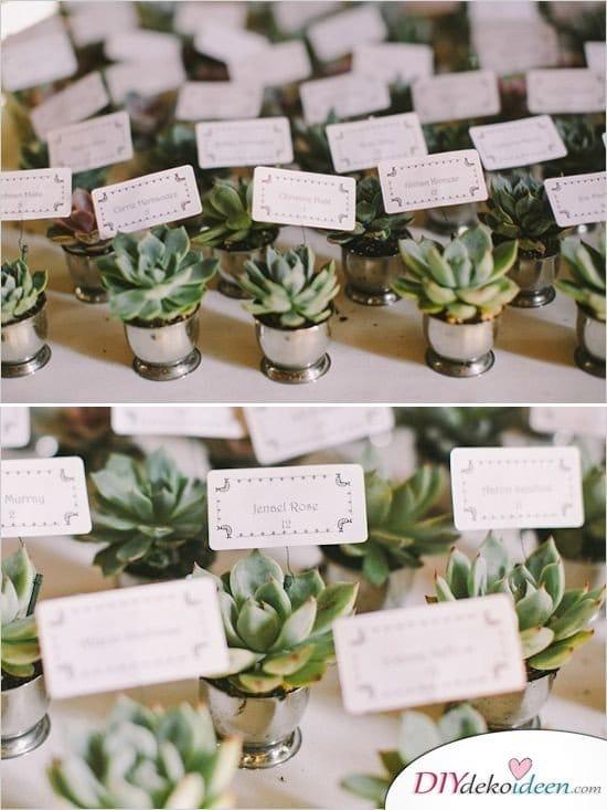 Sukkulenten Platzkarten - Hochzeit Gastgeschenke Ideen