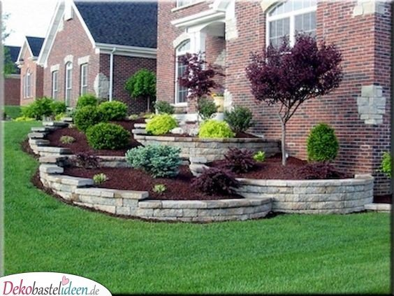 Evergreen bush and small trees - garden design ideas images