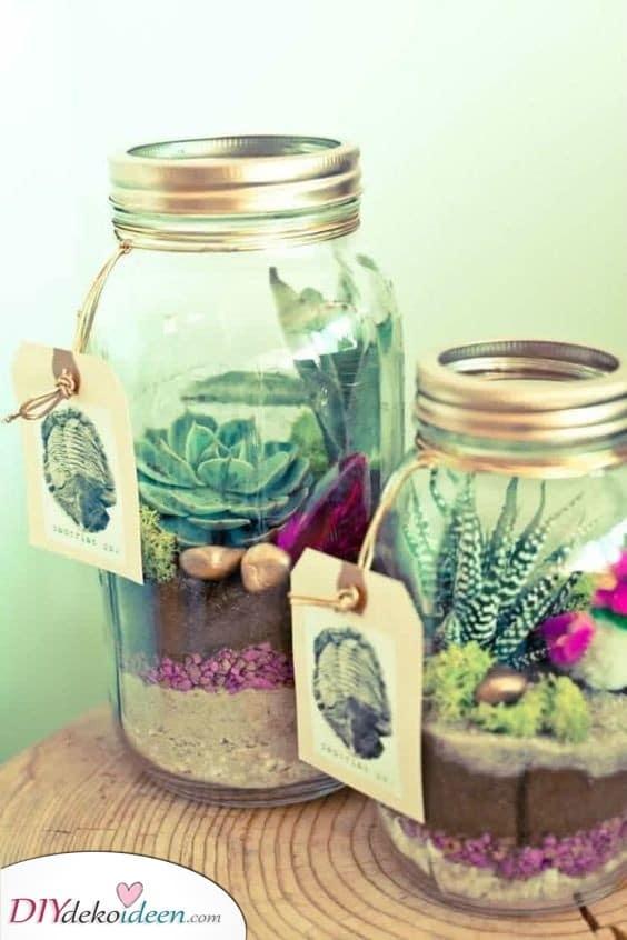 Mini-Sukkulenten in Gläsern - Präsentieren Sie Ideen für Frauen