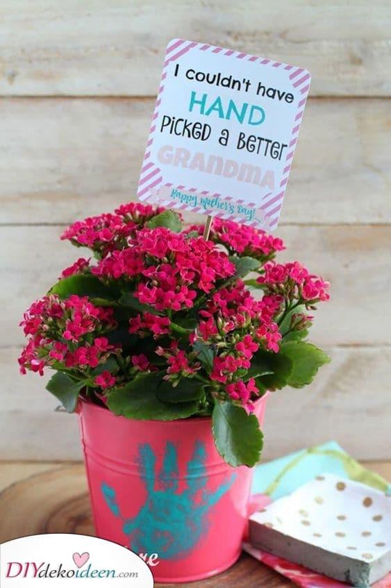 Blumentopf – Mit einer schönen Botschaft