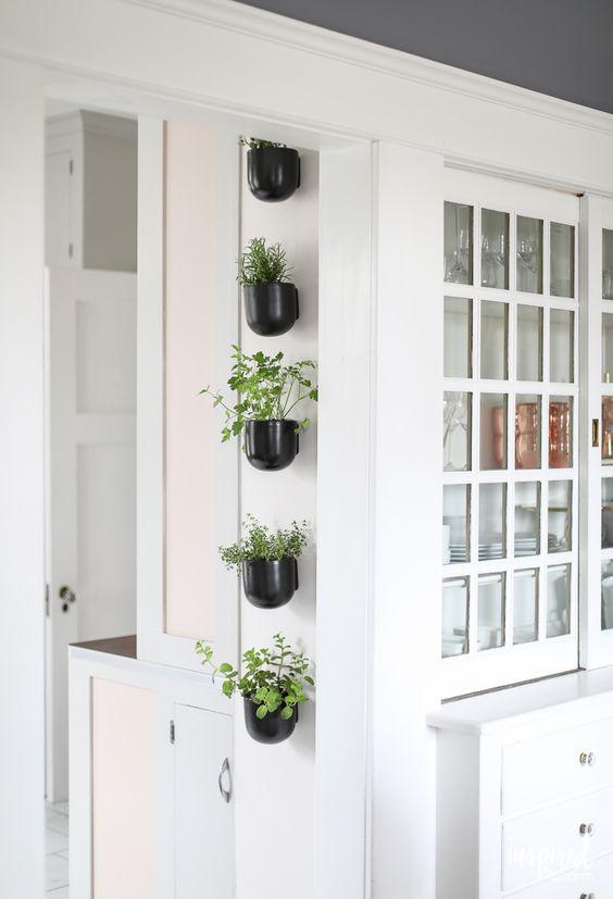 Platz sparen – Kräutergarten für die Küche