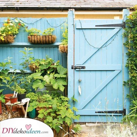 Etwas Farbe hinzufügen – Bring Leben in deinen Garten