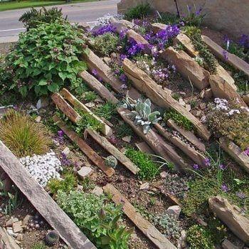 Das Spaltengarten-Design – Eine erfinderische Lösung zum Steingarten anlegen