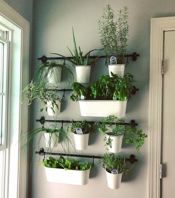 Kräuter aufhängen – Kräutergarten in der Küche