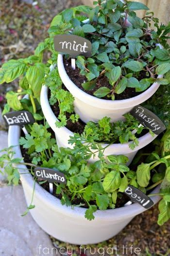 Ein erhöhtes Gartenbett – Bleiben Sie kreativ