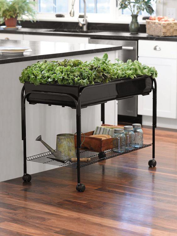 Ein mobiler Tisch – Indoor-Kräutergarten Ideen Wie wäre es, wenn Sie Ihren