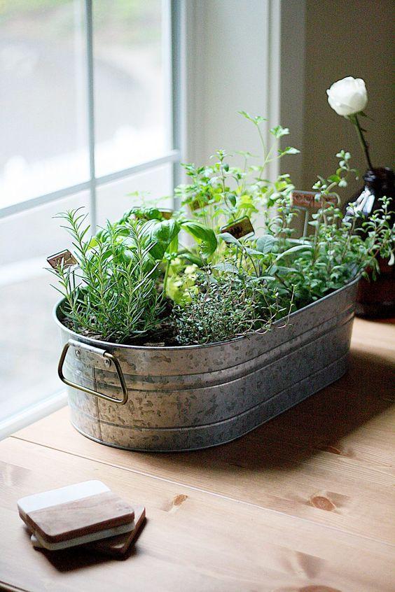 Indoor-Kräutergarten Ideen – Einführung im Landhausstil