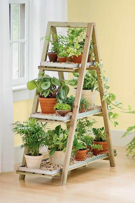 Eine ganze Leiter – Die besten Kräutergarten Ideen
