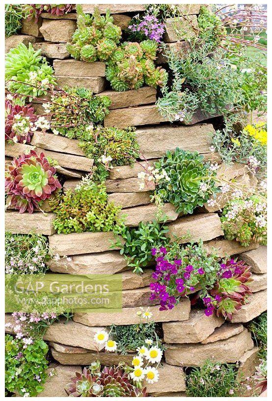 Eine vertikale Steingartenidee – Schick und einfach